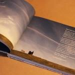 grafik_13_neulandbuch3