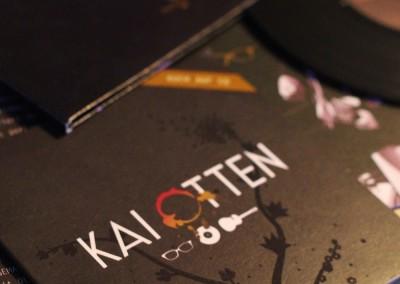 grafik_13_kaiotten3